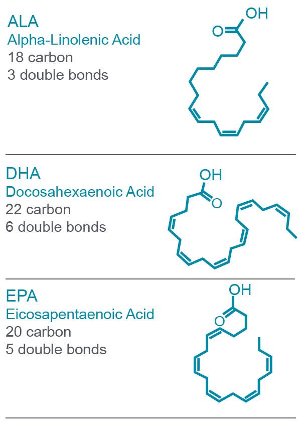 omega-3-masne kiseline